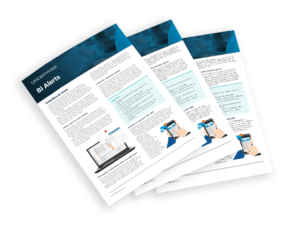 OrderWise BI Alerts Brochure